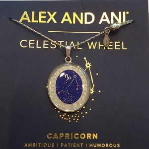 NWT Alex & Ani Celestial Wheel Capricorn Necklace